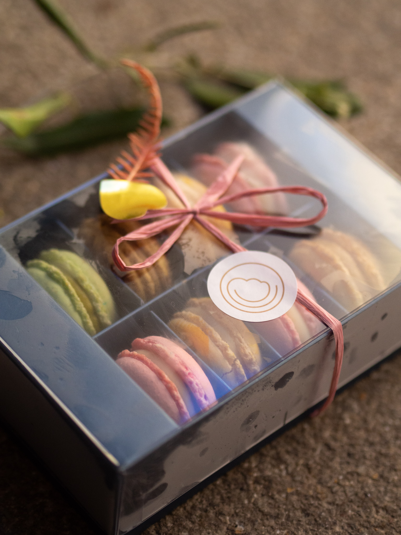 8er Macaron Geschenk Box